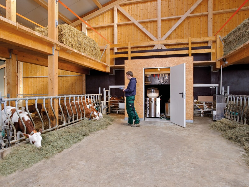 calf Concentrate feeder