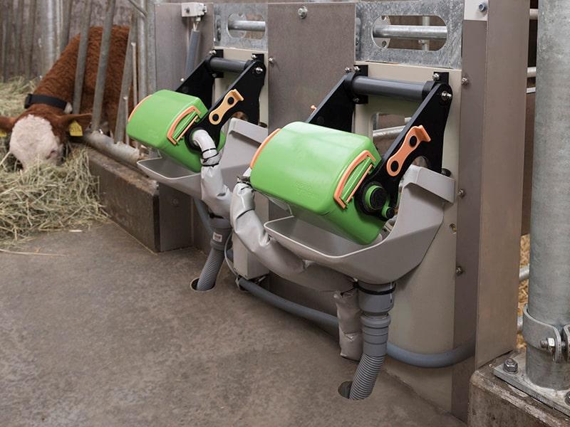 feeding box for calves