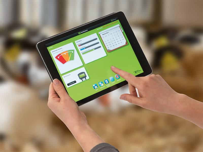 CalfCloud tablet