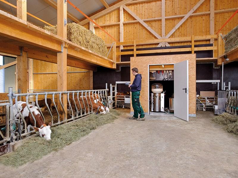 Automatic calf feeder