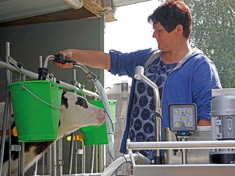 calf feeding with MilkMobil